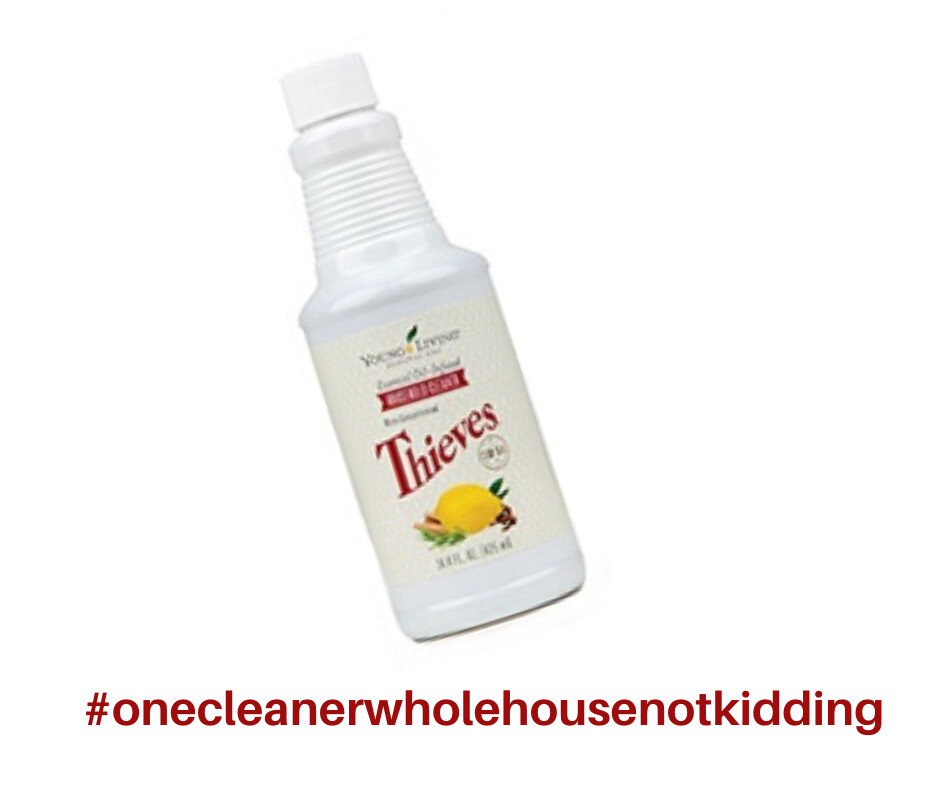 #onecleanerwholehousenotkidding