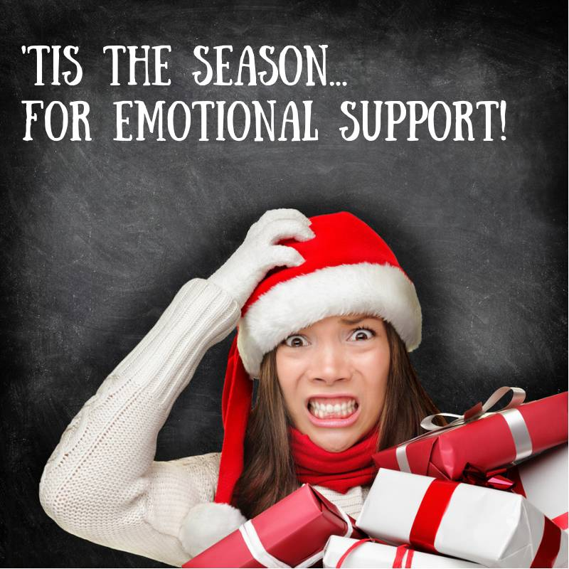 A Few of My Favorite Things: Holiday Emotional Support