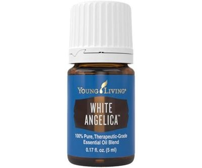White Angelica Oil