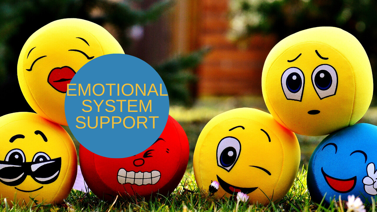 Got Feelings? Get EMOTIONAL System Support!