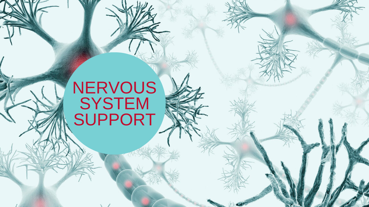 Essential Oils and your Nervous system