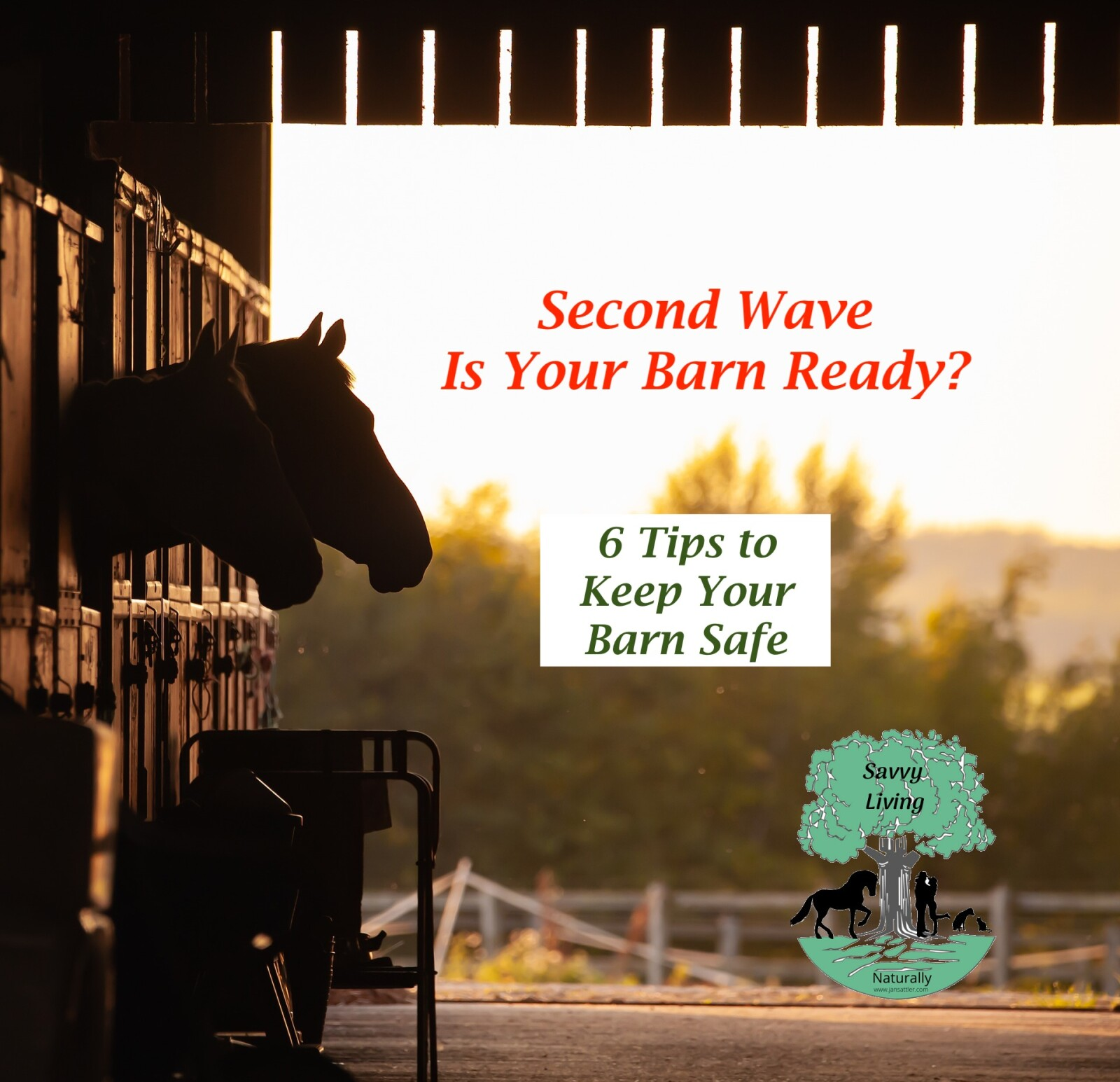 Is Your Barn Ready for the Second Wave?   6 Tips to Keep Your Barn Safe