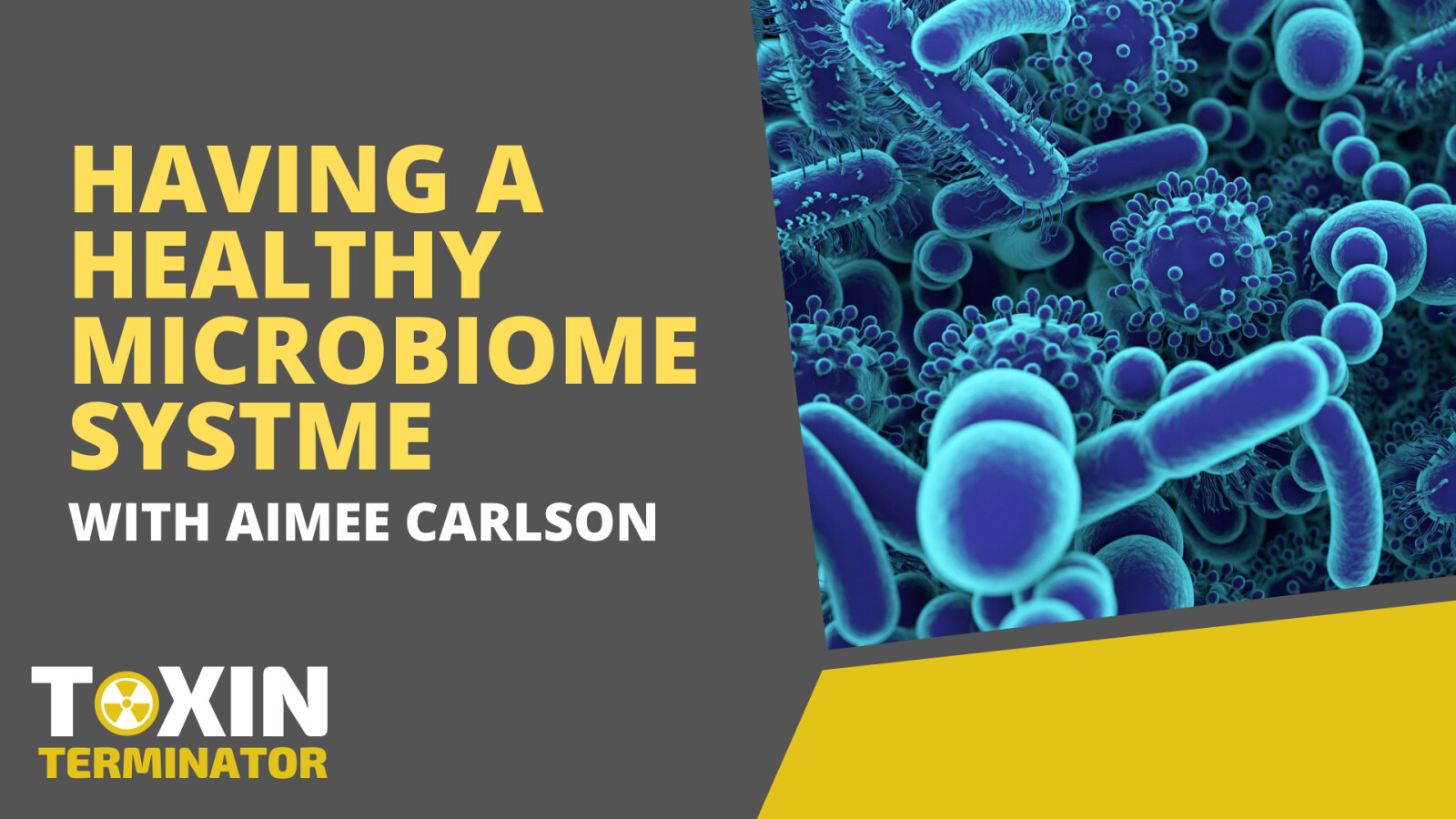 Having a Healthy Microbiome System