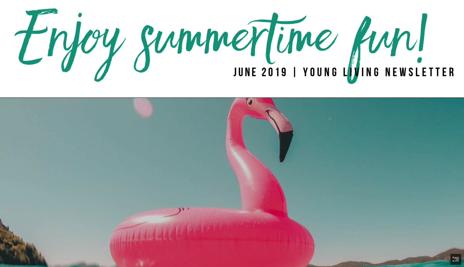 Summer fun in the sun, recipes, DIY's and more!