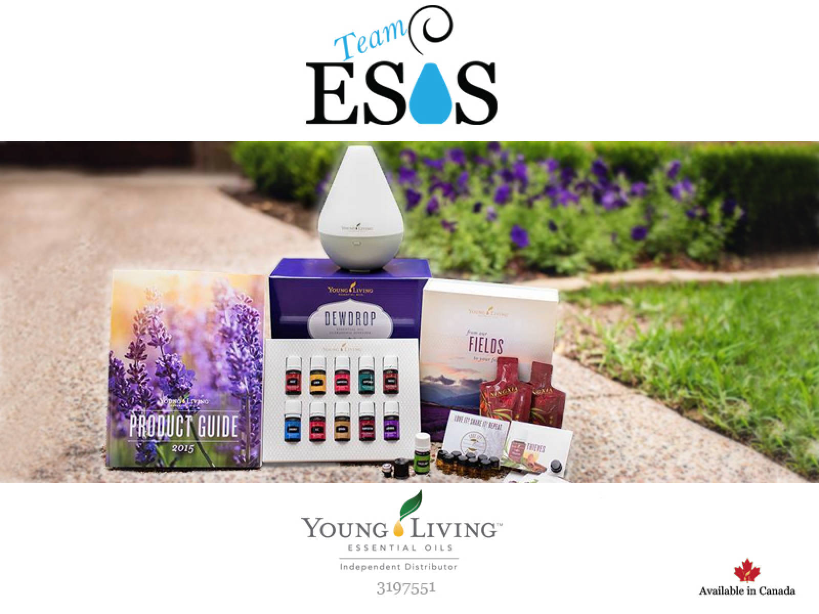 Get A Young Living Premium Starter Kit For Free
