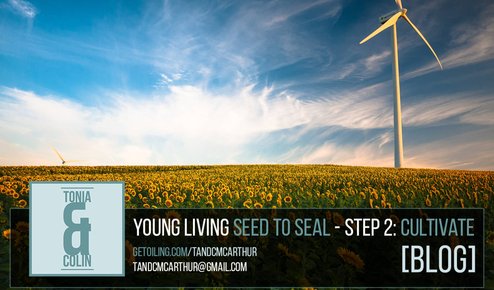 Young Living Essential Oils Seed to Seal Process - Step 2: Cultivate