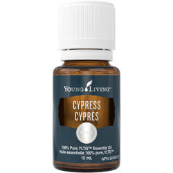 [NHP] Young Living Canada Natural Health Product Feature: Cypress