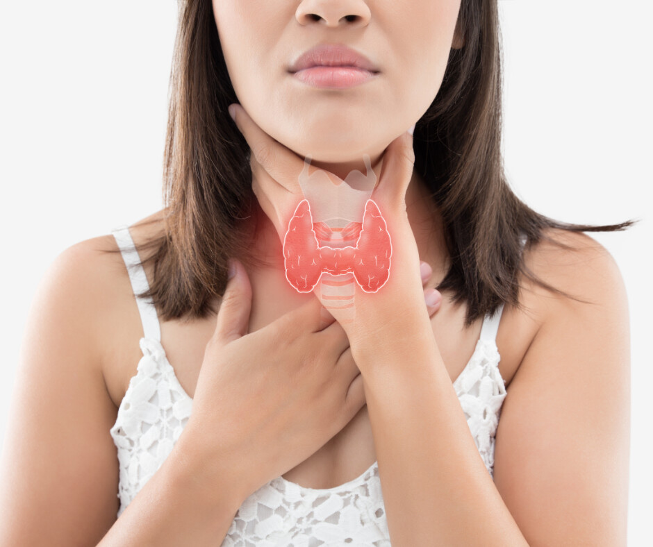 Estrogen Dominance and the Thyroid