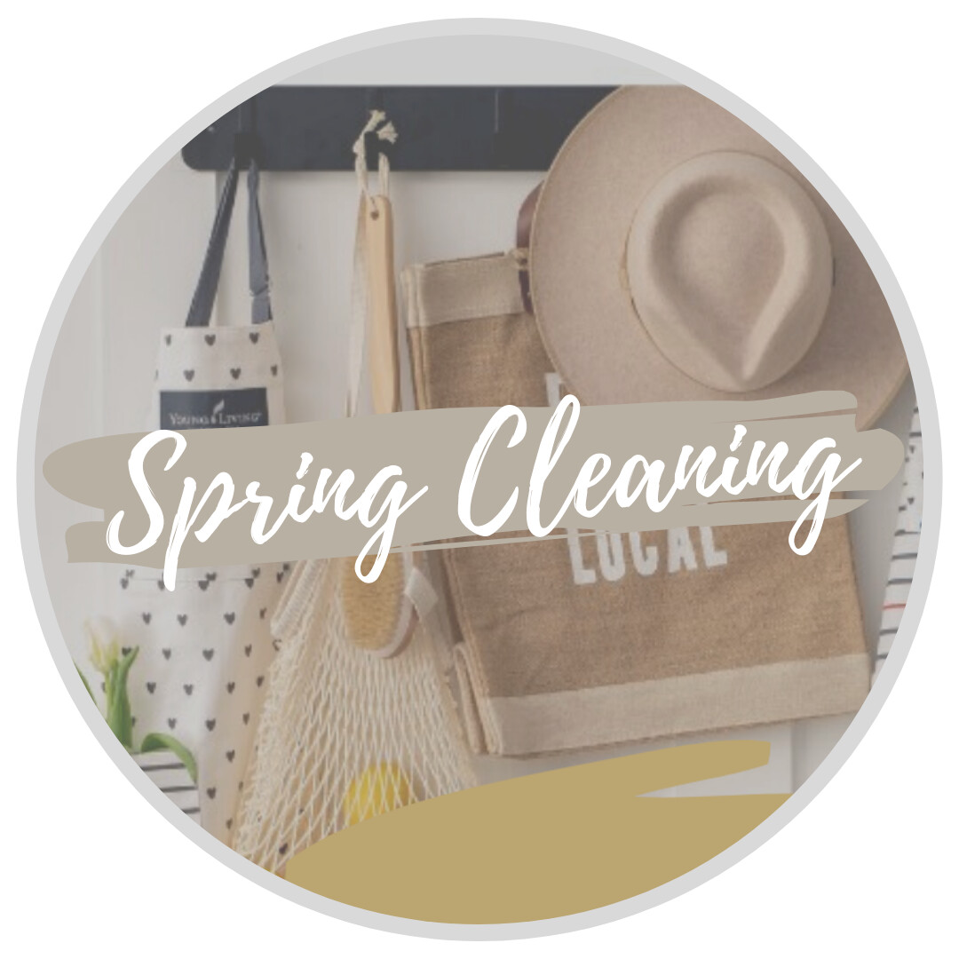 The Dirt on Spring Cleaning + Products
