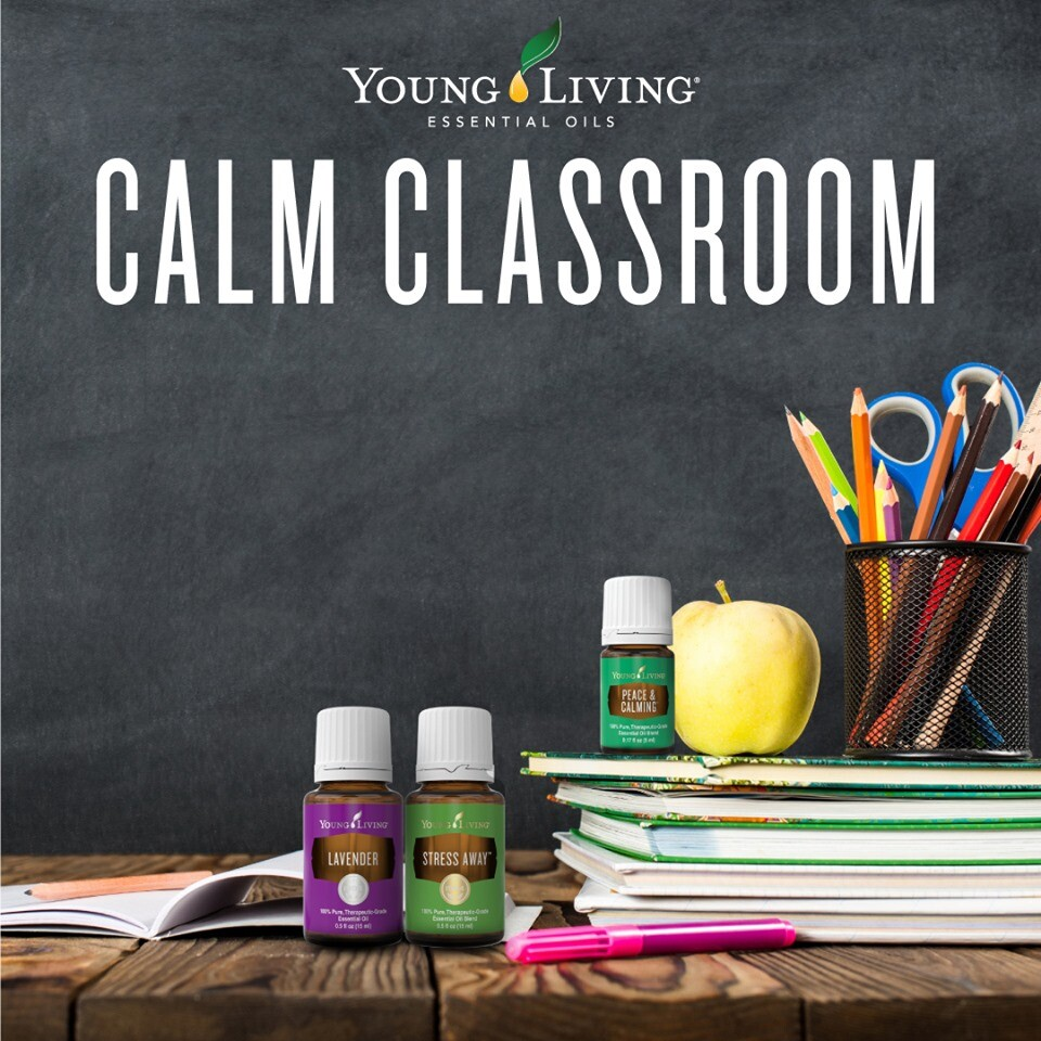 Calling all Teachers - How To Bring Calmness to Your Classroom