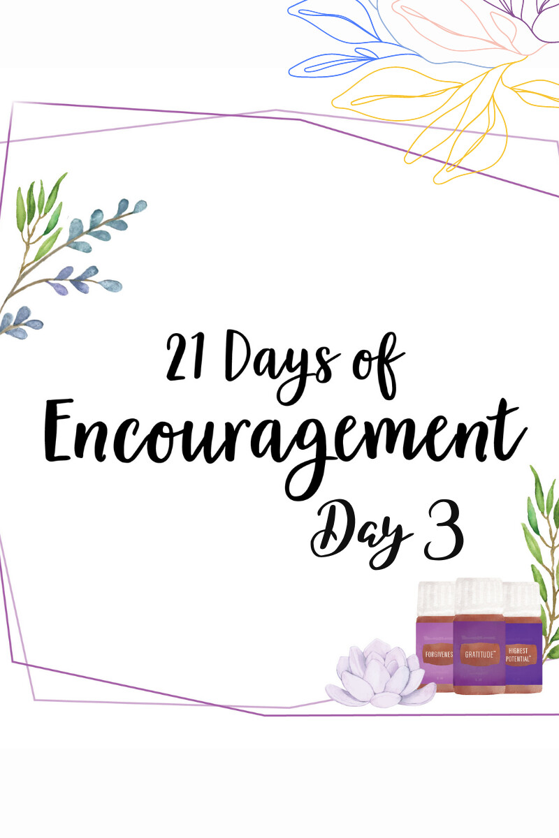 Encouragment During This Thanksgiving Season Day 3 ( of 4)