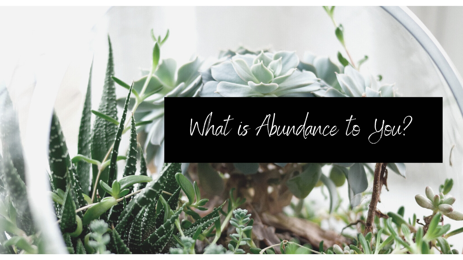 What is Abundance to You?