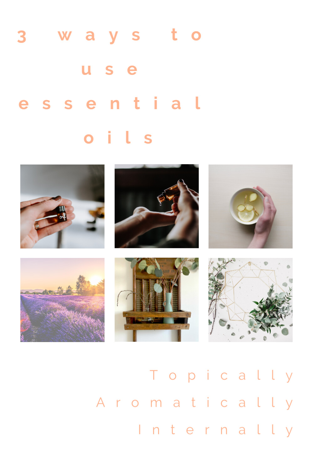 I have the oils, How do I use them?