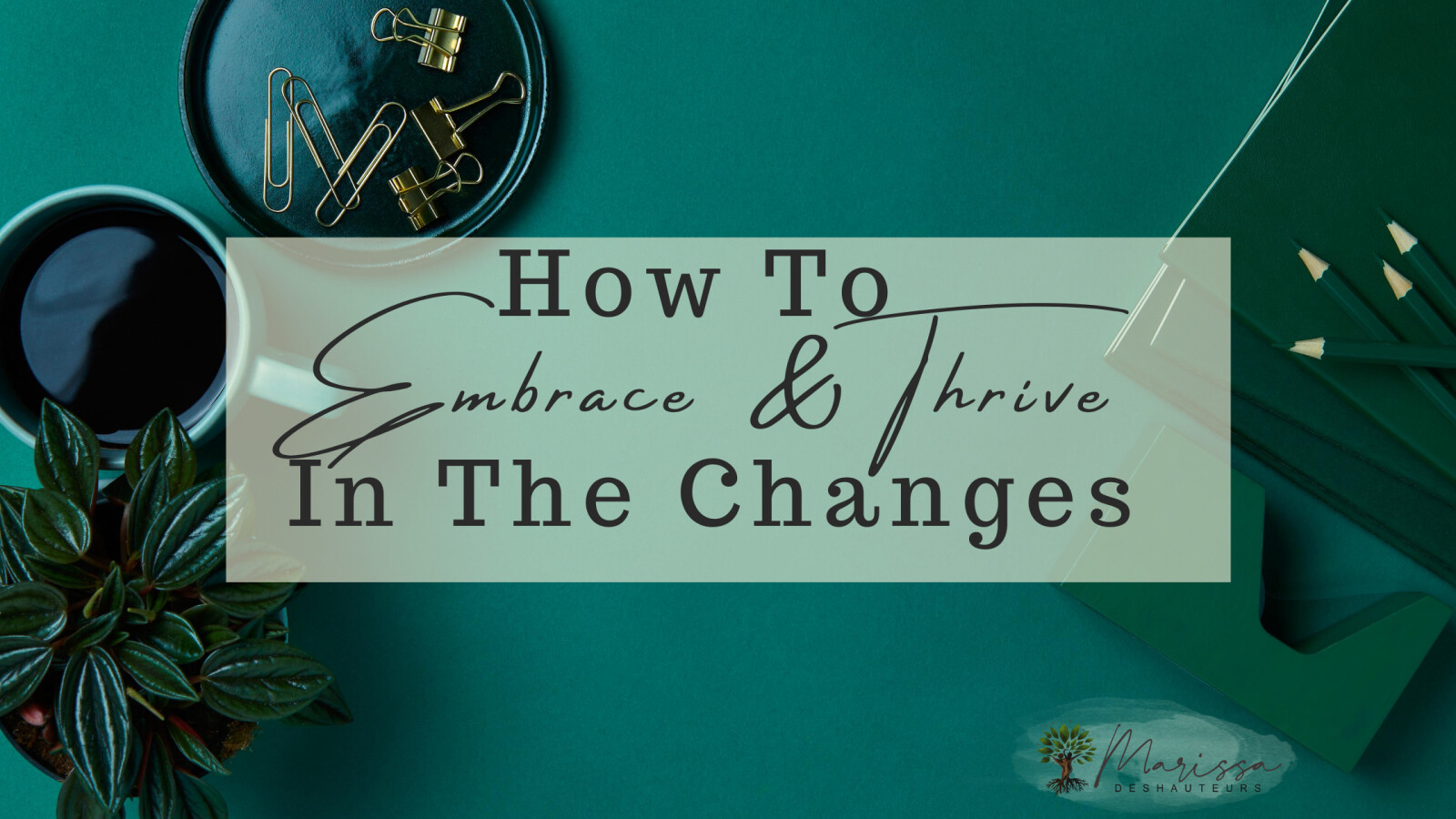 HOW TO EMBRACE & THRIVE IN THE CHANGES