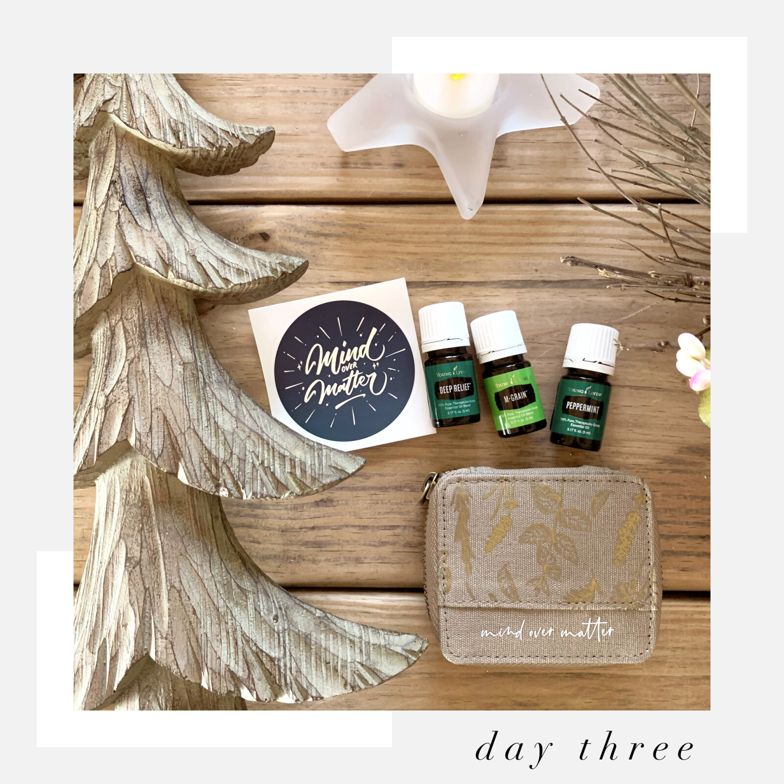 12 Days of Giveaways: Day 3 - Mind Over Matter