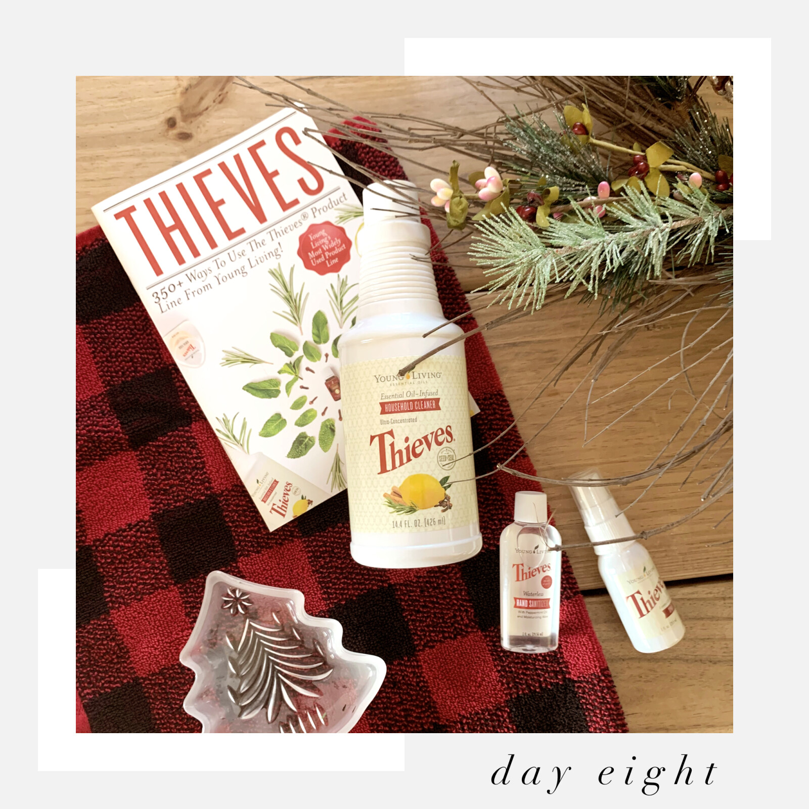12 Days of Giveaways: Day 8 - All About Thieves