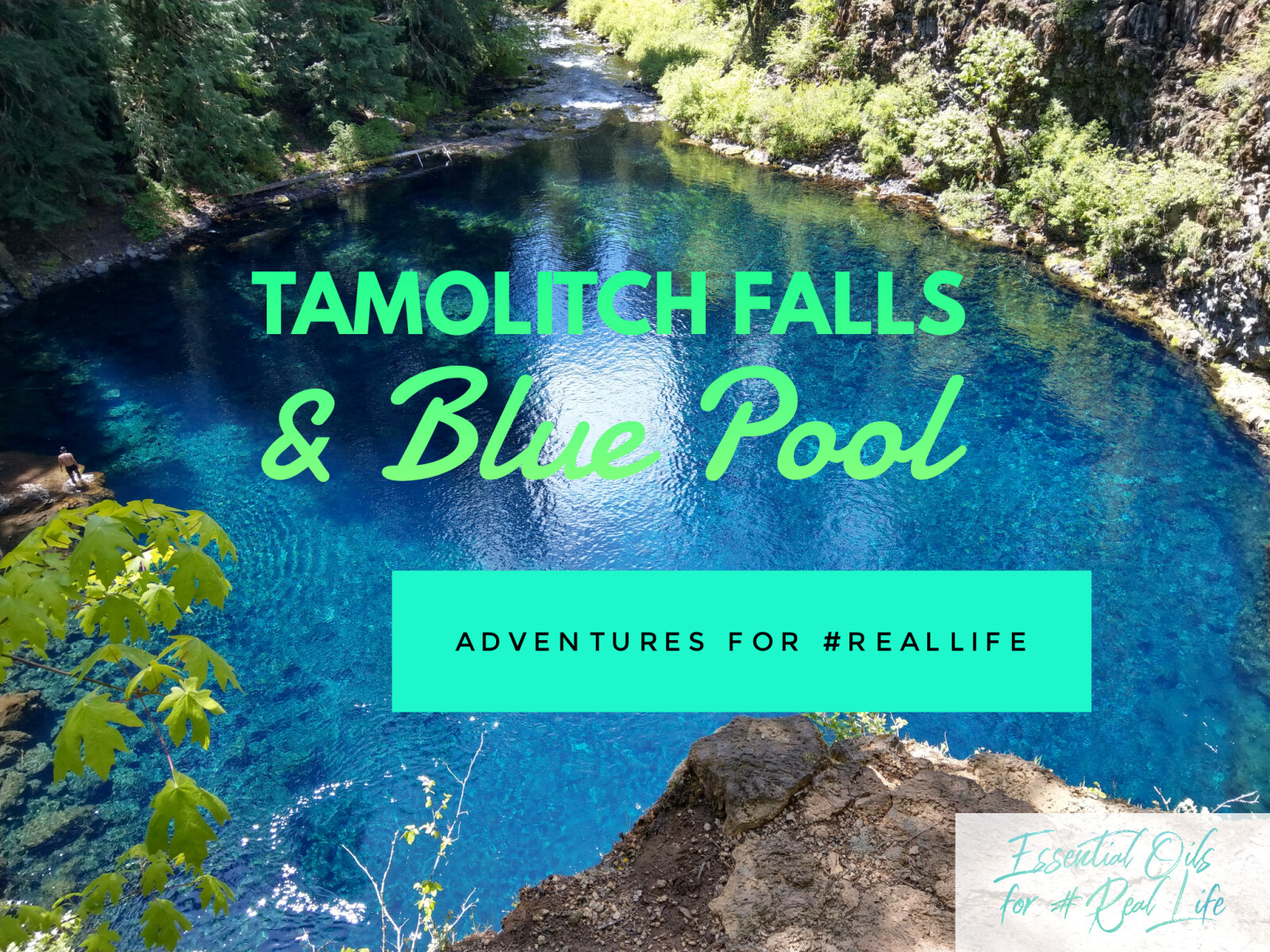 Adventures at Tamolitch Falls and Blue Pool on the McKenzie River Trail