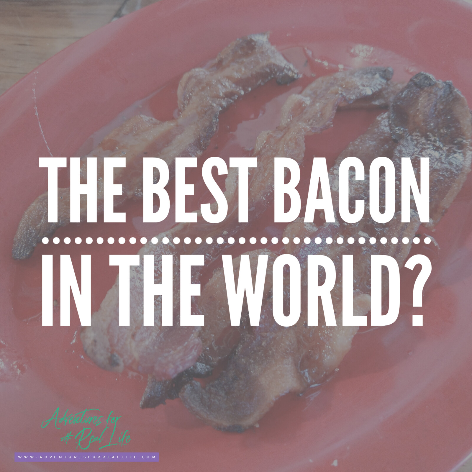 The Best Bacon in the World?