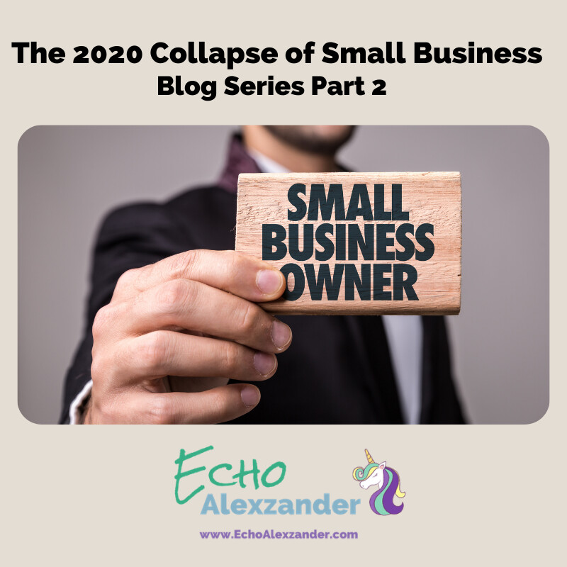 The 2020 Collapse of Small Business - Series Part 2
