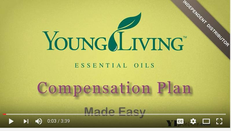 Great Animated Video with Good Graphics to Understand YL Compensation Plan