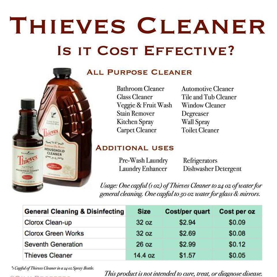 Fall Cleaning - Thieves to the rescue | firststepforhealth | Kim ...