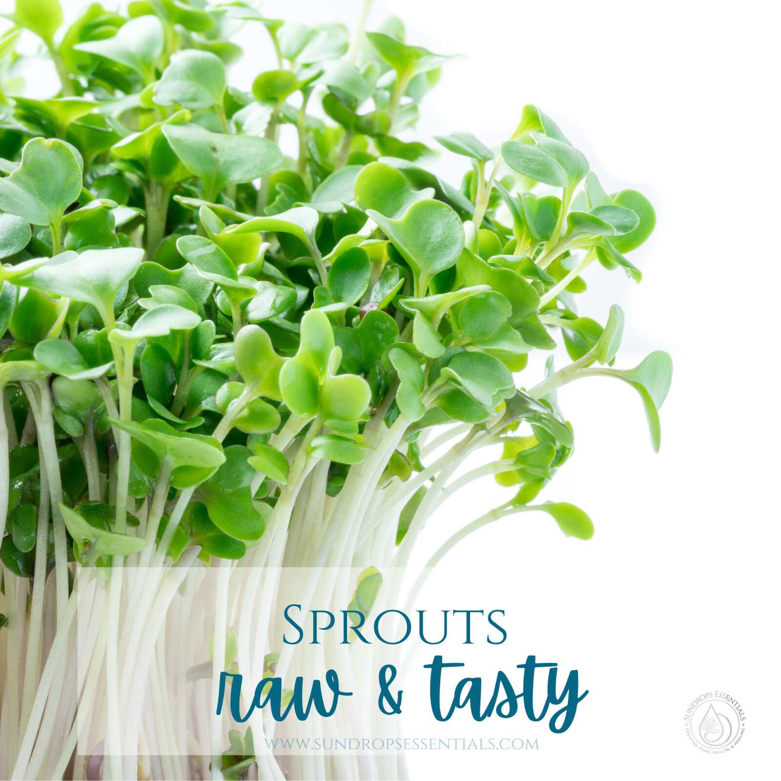 Raw & Tasty Sprouts