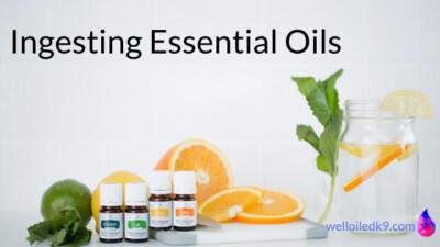 Ingesting Essential Oils