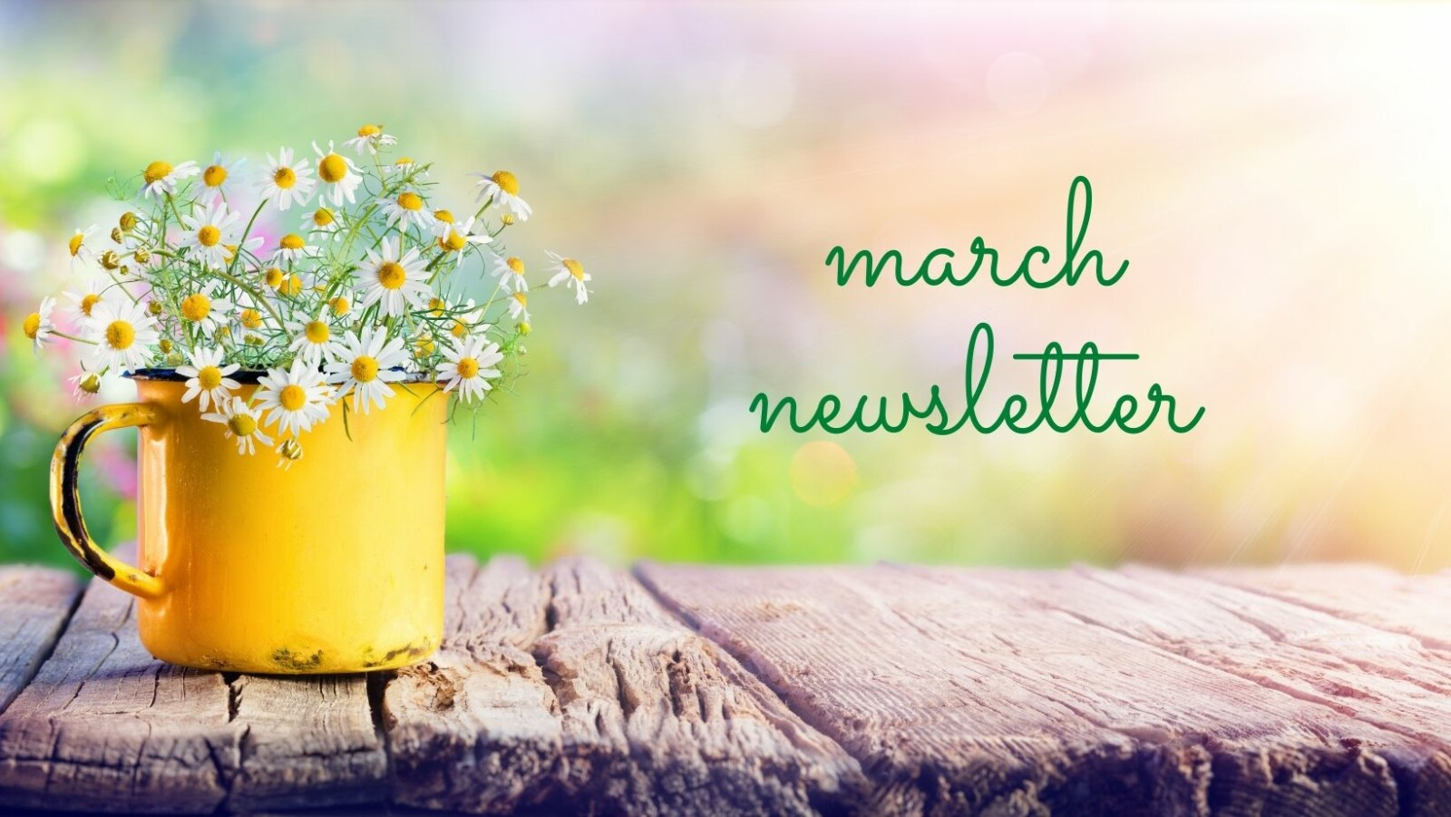 March News! 🍀