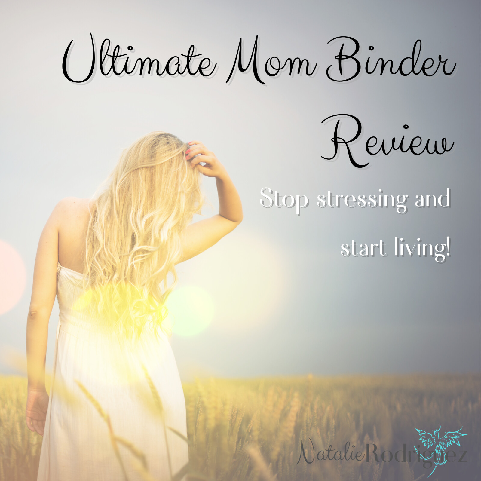 Ultimate Mom Binder Review