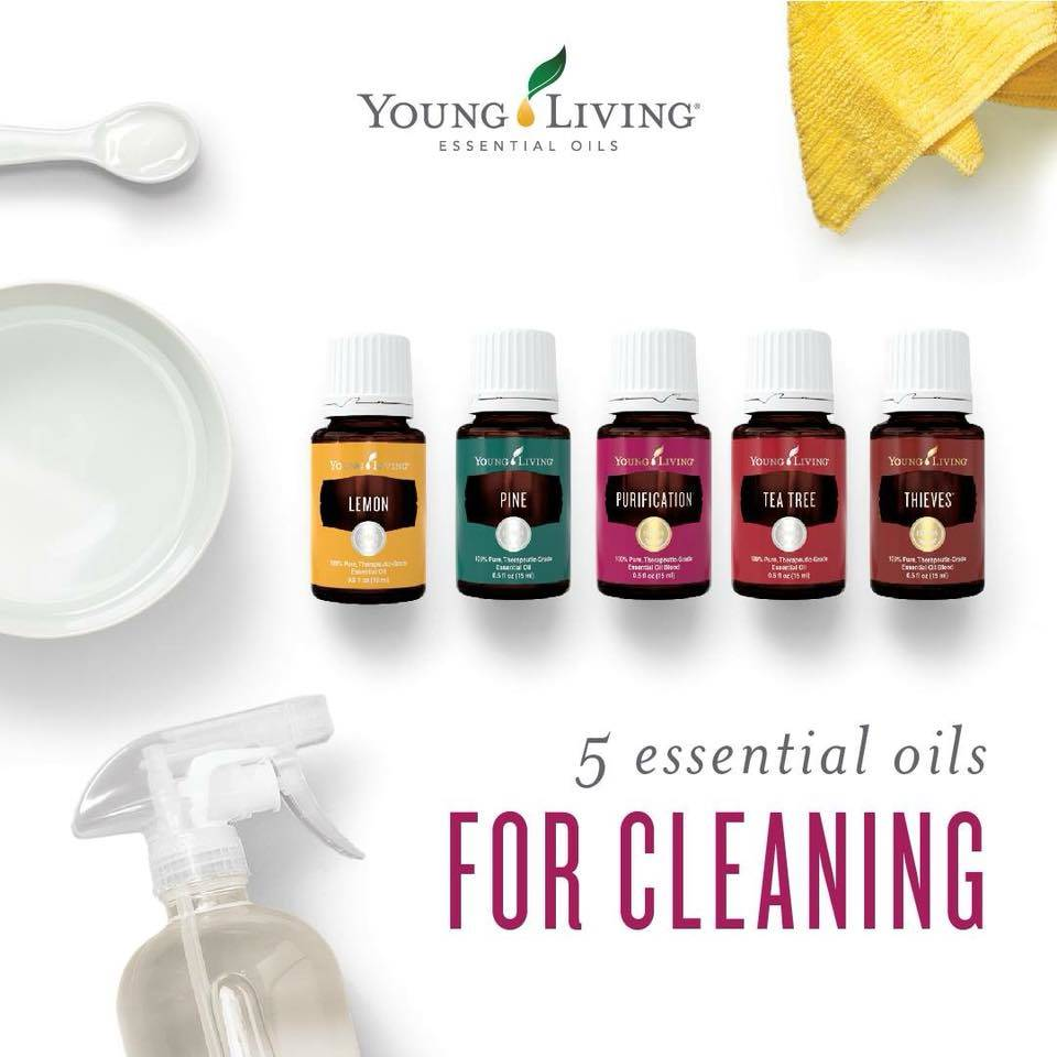 Spring Cleaning - Young Living Style