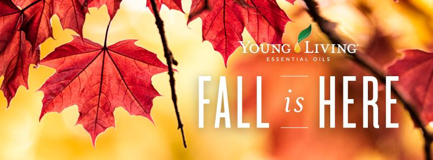 Fall Wellness & November Promos!